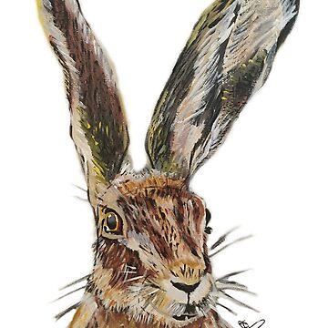 Wild hare acrylic painting by katiepalmerart