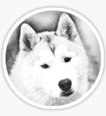 White Husky with Blue Eyes Digital Pencil Sketch Sticker