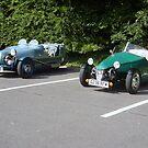 Blue & Green by tonymm6491