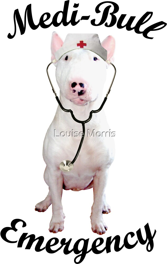 Medi-Bull Emergency! by Louise Morris