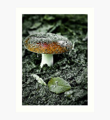 Sandy Mushroom Art Print