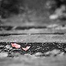 Leaf by babibuba