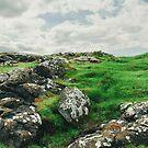 Landscape  by babibuba