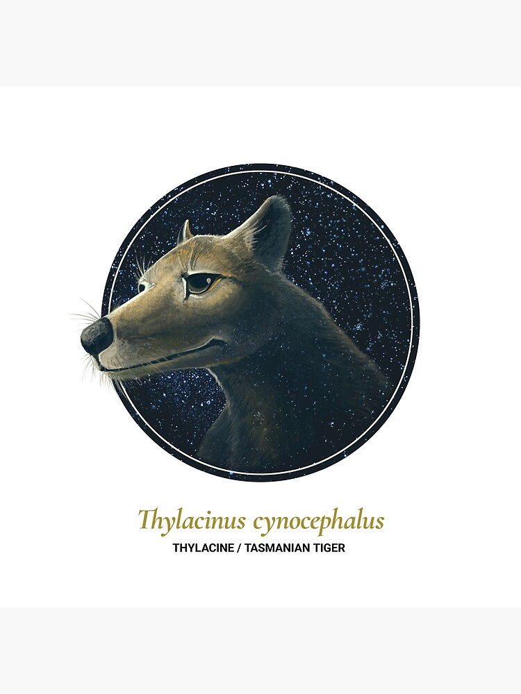The Circles of Life: Thylacine / Tasmanian Tiger by franzanth