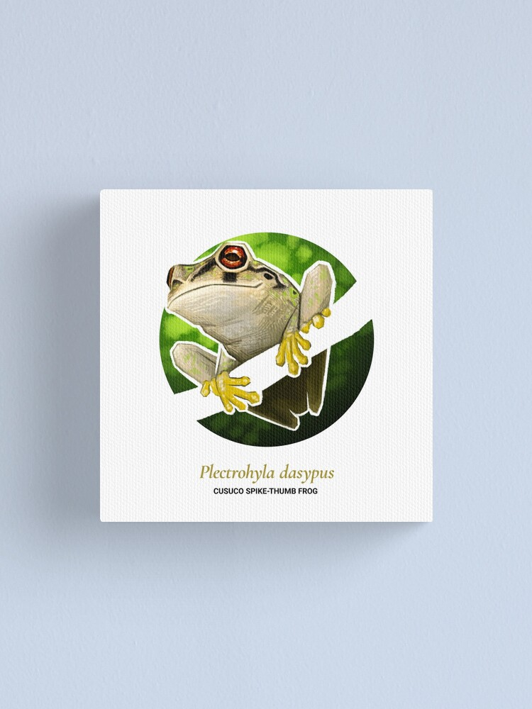 Alternate view of The Circles of Life: Cusuco Spike-thumb Frog Canvas Print