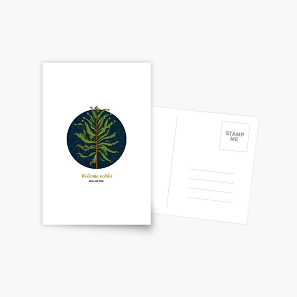 The Circles of Life: Wollemi Pine Postcard