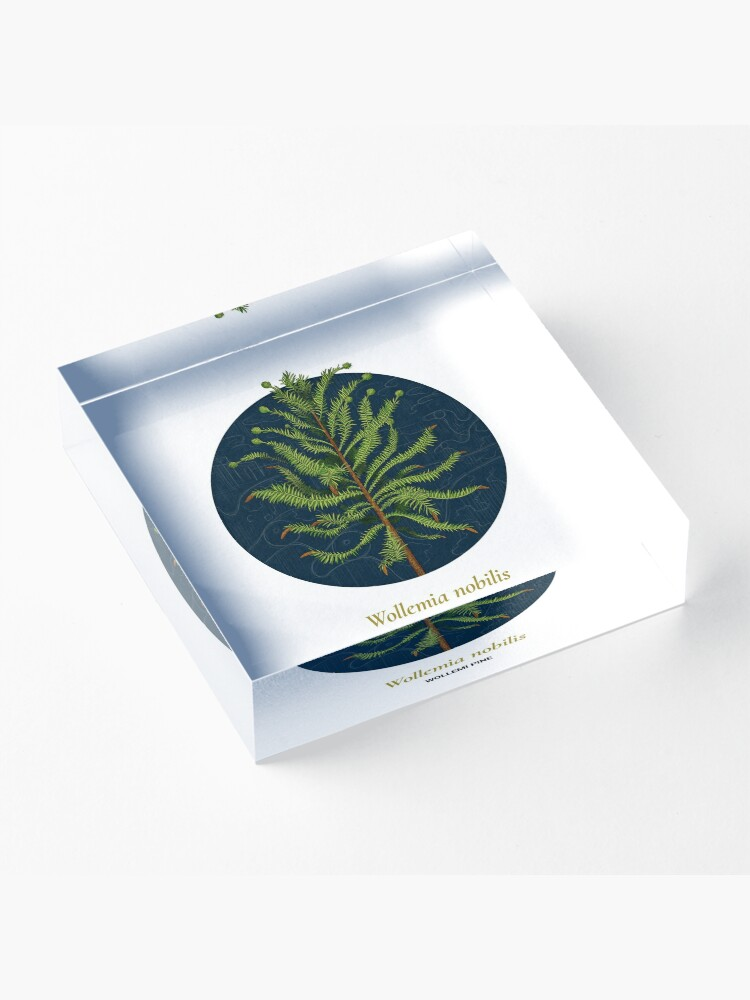 Alternate view of The Circles of Life: Wollemi Pine Acrylic Block
