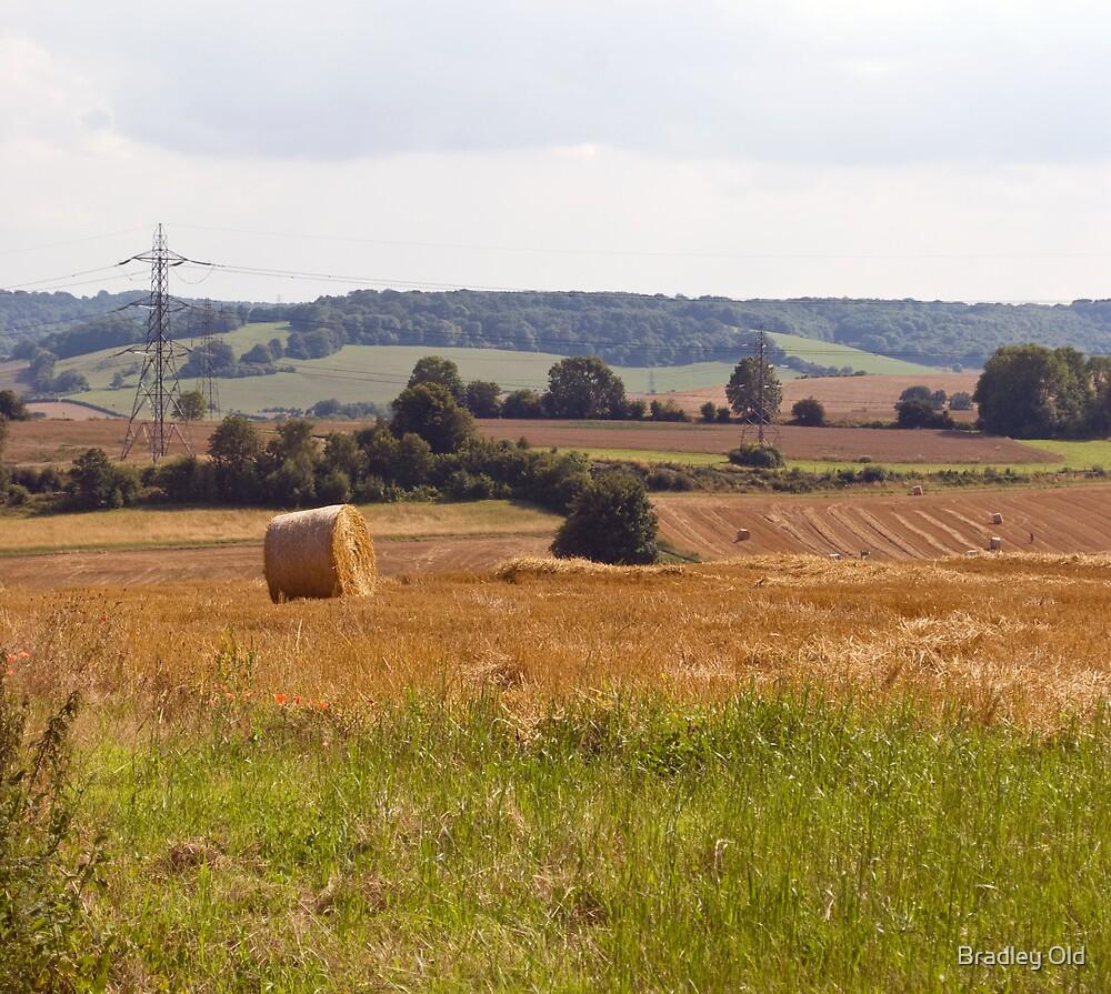 Harvest by Bradley Old