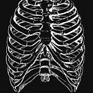 Skeleton Rib Cage by GhostlyWorld