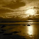 """""""Sepia Storm Approaching"""" by Tim&Paria Sauls"""