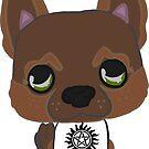 Puppy Jensen Ackles by Little  Pop Workshop
