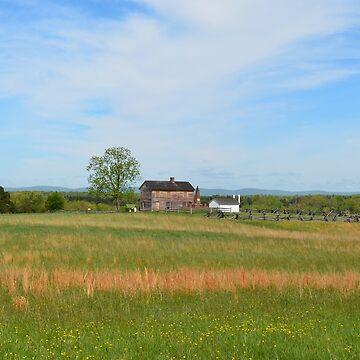 Manassas Civil War Battlefield by lookherelucy
