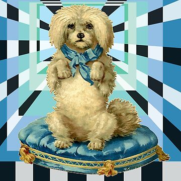 Ediemagic Cosmic Poodle by Ediemagic