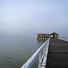 Foggy Morning by vonb