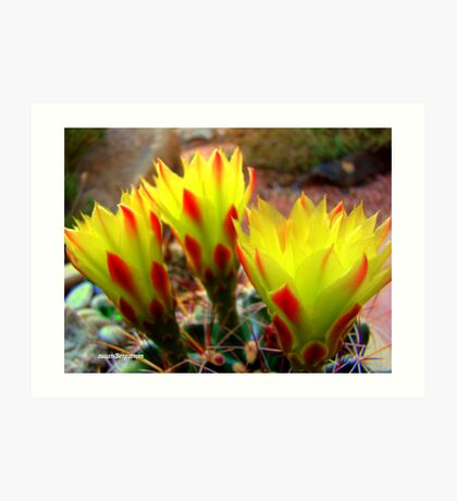 Cactus Promise Kept Art Print