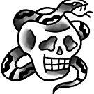 Snake Skull by tomgardenart