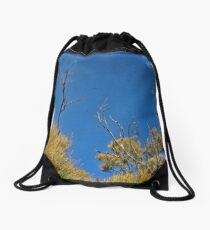 Blue 2 Drawstring Bag