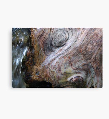 bathing trunk Canvas Print