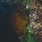 Summer Lake - Aerial Photography by Nicklas Gustafsson