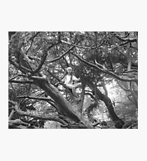 Enchanted Tree Photographic Print