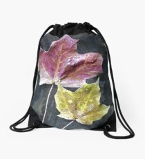Two Autumn Leaves Drawstring Bag
