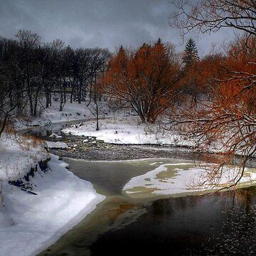 A River Runs Through It - HDR  by umpa1