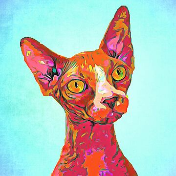 Awesome Sphynx Cat by NoraMohammed