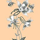 bees on aquilegia flowers with honey colored background by EllenLambrichts