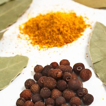 Spices by gavila