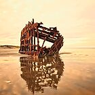 High and Dry, the Peter Iredale by Kay Brewer