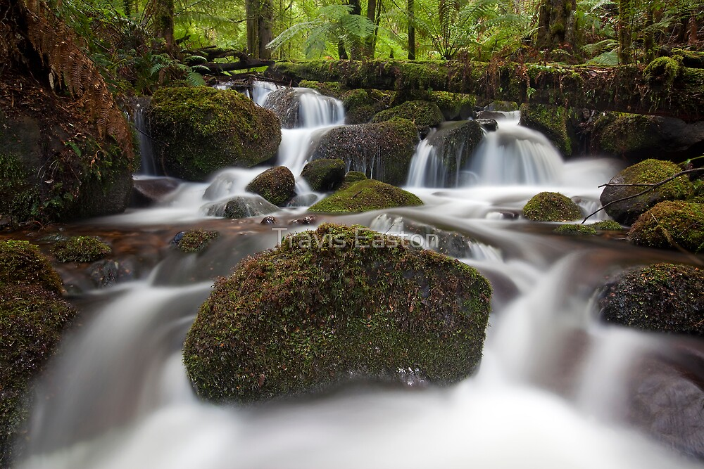 Waters of Life by Travis Easton