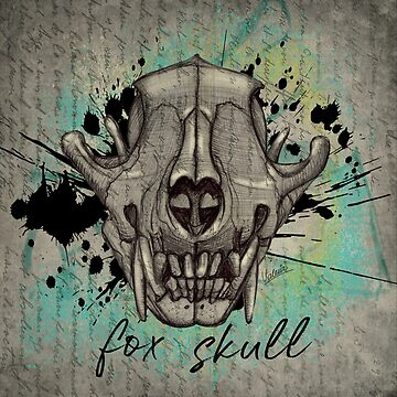 FOX SKULL (frontal view) by ilustradsn