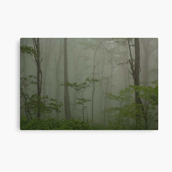"""...Through the Veil of Mist."" Canvas Print"