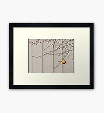 Pear X2 Framed Print
