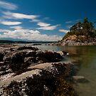 Wallace Island Provincial Marine Park by toby snelgrove  IPA