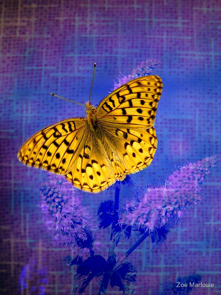 Blazing Bright Butterfly by Zoe Marlowe