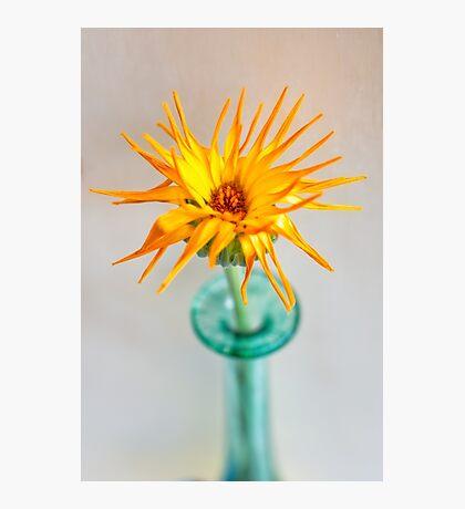 Sunshine Lady Photographic Print
