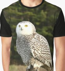 In Awe Graphic T-Shirt