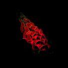 Fantastical Phosphorescent Foxglove (red) by Ray Warren