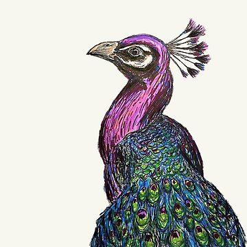 Peacock Drawing by Creatividad