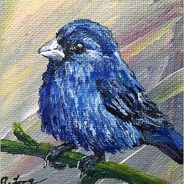 Bluebird by Creatividad