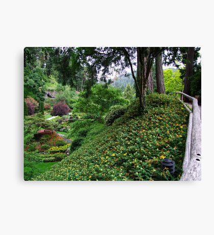 Sunken Garden No.4 Canvas Print
