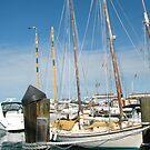 Key West Boats by Margaret  Shark