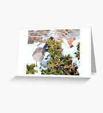 Mockingbird and Holly Greeting Card