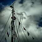 Tall Ships & silver birds (1) by SNAPPYDAVE