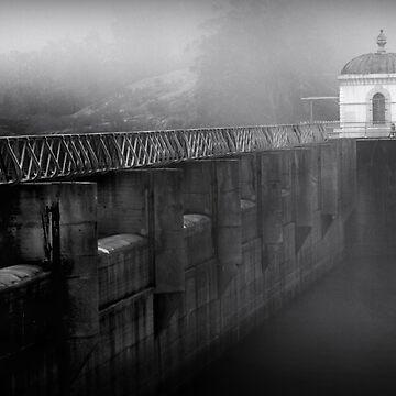 Mundaring  Weir Fog by ehalv2