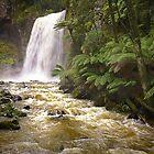 0882 Hopetoun Falls - Otways by Hans Kawitzki