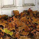 The Forgotten Door by Jason Bran-Cinaed