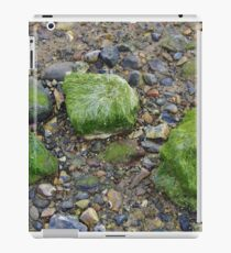 Pebbles and Seaweed iPad Case/Skin