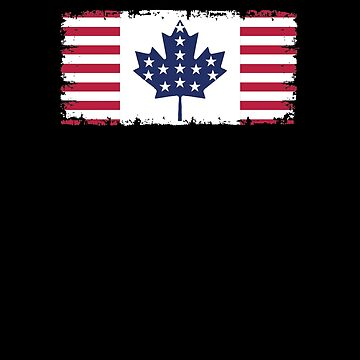 Canadian American Flag V8 by TeeTimeGuys